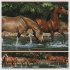 Wild Horses Peel & Stick Wall Border