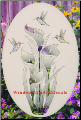 Lily & Hummingbirds Window Decal