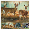 Wild Life Medley Peel & Stick Wall Border
