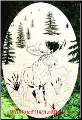 Moose Scene Etched Glass Window Decal