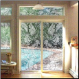 Tropical Leaves Window Film